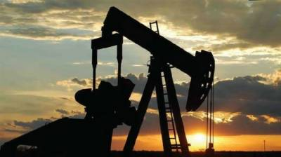 Massive onshore gas field Reserves discovered after a year of exploration: Report