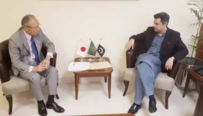 Pakistan makes big offers to top Japanese investors