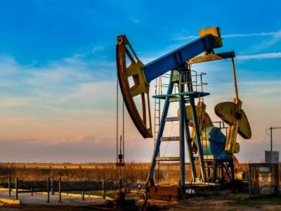 New Oil field discovered worth 50 billion barrels of crude oil: Report
