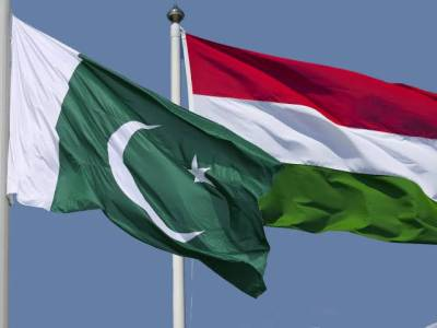 Pakistan and Hungry decide to extend cooperation to strengthen economic ties: Report