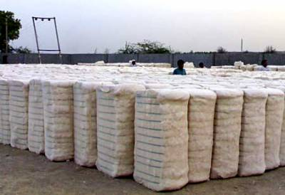 Pakistan Cotton Exports register significant increase in first quarter of FY 2019-20