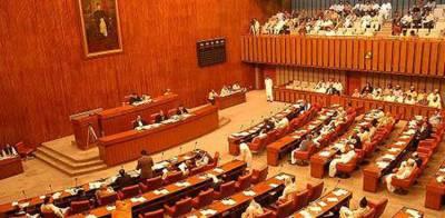 Pakistan Senate Committee passes resolution against US