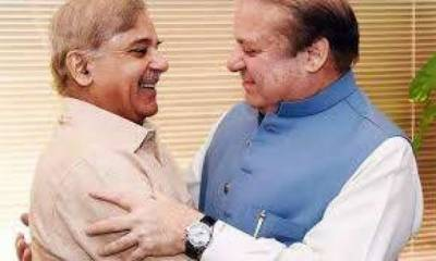 Sharif brothers laundered money worth billions through front companies and cash boys