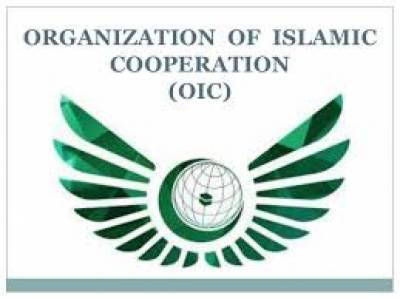 Indian government gets yet another strong diplomatic snub from OIC