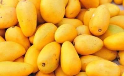 Pakistani Mango and Kinnow exporters get a good news