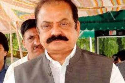 Rana Sanaullah bail case detailed verdict announced by LHC