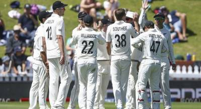 New Zealand disgraced India in the World Test Championship test match