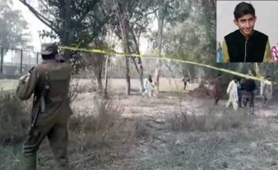 Teenager Pakistani boy killed and torn apart by lions inside a cage in Lahore Safari Park