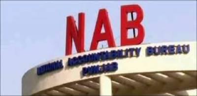 NAB performing its duties independently: Farukh Habib