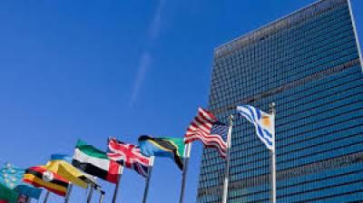 Protect environment, prevent pandemics: UN