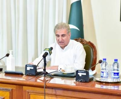 FM lauds contribution of overseas Pakistanis to bolster country's economy