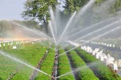 Rs 17,470 mln allocated for irrigation