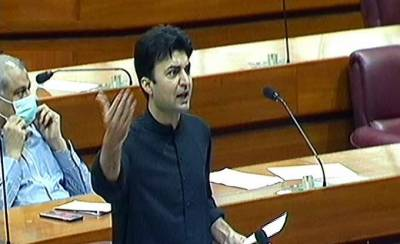 Govt allocated Rs 1200 bln relief package to deal pandemic impact: Murad Saeed