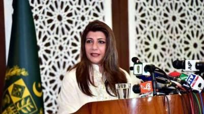 Pakistan draws world attention to plight of Kashmiri women in IOJ&K