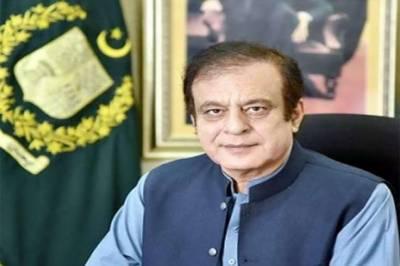 PM Imran following consistent policy to boost economy: Shibli
