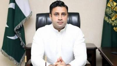 Govt taking steps to facilitate expatriates stranded in various countries: Bukhari