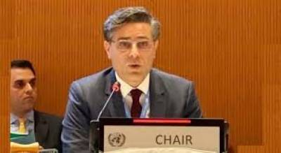 Pakistan urges UN Human Rights Council to stop Indian crimes in Kashmir