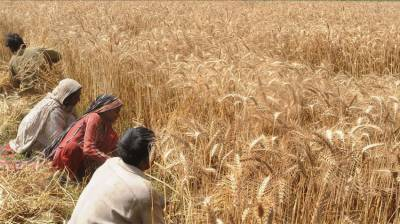 Punjab Govt providing 60% subsidy to farmers July 09, 2020