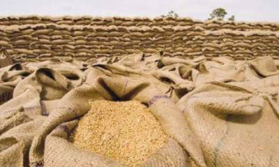 Govt issues wheat import' permits to private sector for smooth demand, supply of flour July 20, 2020