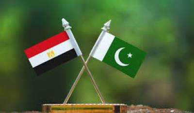Pakistan, Egypt agree to increase cooperation in IT field july 28, 2020