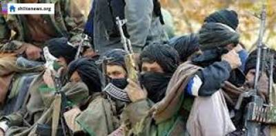 Taliban declare three-day ceasefire during Eid ul-Azha July 28, 2020
