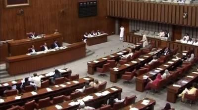 Senate passes Anti-Terrorism (Amendment) Bill 2020, UNSC (Amendment) Bill 2020 July 30, 2020
