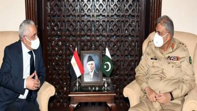 Egypt lauds Pakistan's efforts for regional peace, stability August 05, 2020