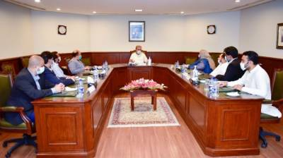 FM appreciates PTI's SA members for playing role of effective opposition August 07, 2020