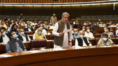 Parliament rejects India's illegal and unilateral actions in IIOJ&K August 07, 2020