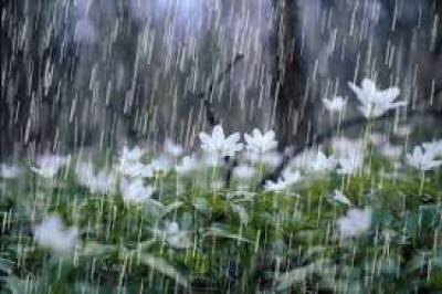 Rain, thundershower expected in Sindh, Balochistan, South Punjab Aug 07, 2020