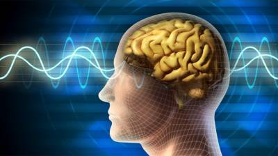 Brain gets bigger if you're anxious and depressed: Australian study August 10, 2020