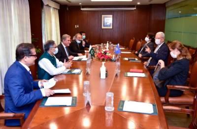 Pakistan seeks effective role of UNGA to end HR violations in IIOJK: FM August 10, 2020