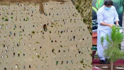 PM thanks people for participating in tree plantation drive August 10, 2020