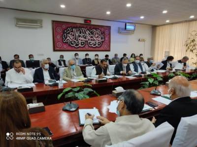 Cabinet committee expresses satisfaction over CPEC projects' progress August 15, 2020