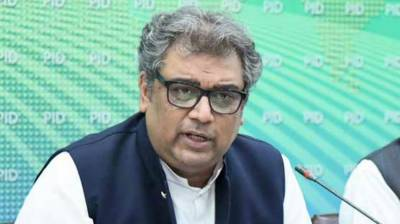 Govt to overcome all challenges: Ali Zaidi August 15, 2020