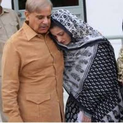 Court issues notice to Shehbaz, Maryam on plea against illegal land occupation , Aug 17, 2020