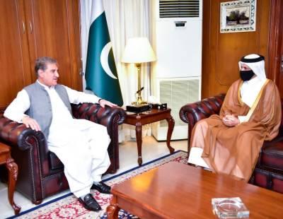 FM Qureshi, Qatari Ambassador discuss cooperation in different sectors August 17, 2020