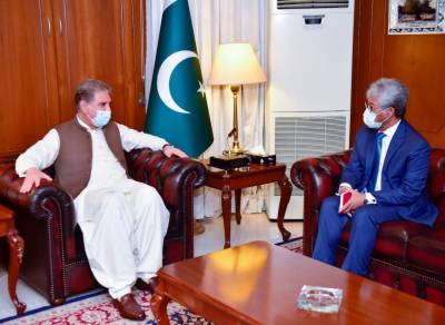 Pakistan wants to further expand its bilateral relations with Indonesia: FM August 26, 2020