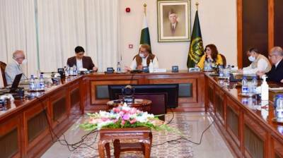 Advisory Council for Foreign Affairs discusses regional peace, security situation August 27, 2020