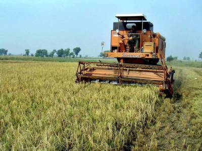 PTI government unveils new markup subsidy scheme for farmers