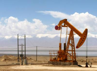 New oil and gas reserves discovered in Pakistan