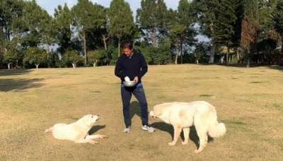 Amid PDM threats of overthrowing PTI government, PM Khan spends Sunday with his dogs Sheru and Tiger