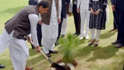 Pakistani PM Imran Khan's vision of 10 billion tree planting across the country
