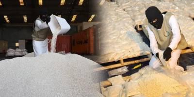 Huge narcotics smuggling bid foiled at the Saudi port