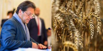 PM Imran Khan announces new wheat support price