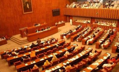 PM Imran Khan decides to replace PTI Senate Candidates