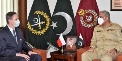 Polish Ambassador held important meeting with COAS General Bajwa