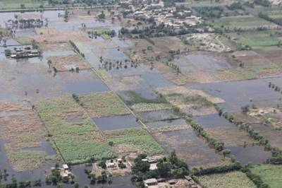 Pakistan among world top risk countries from climate change with annual economic losses worth $4 billion