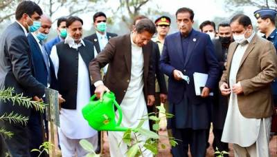 PM Imran Khan reiterated Pakistan's commitment to address climate change
