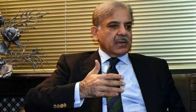 PMLN President Shahbaz Sharif speaks against Maryam Nawaz point of view over PDM